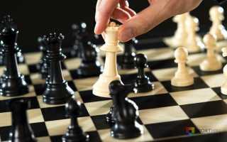 Кто придумал шахматы