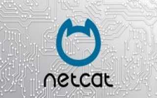 Что такое netcat