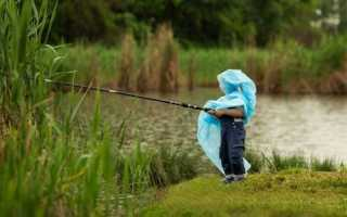 Клюет ли рыба после дождя