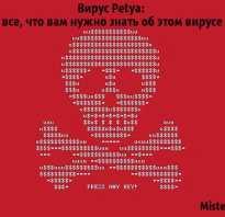 Как работает petya вирус