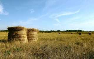 Что такое субсидии на сельское хозяйство