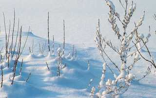 Откуда берётся снег