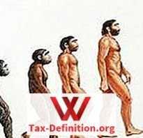 Что такое эволюция