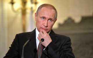 Почему всех так взволновала кофта Путина