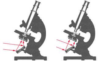 Какую функцию выполняет зеркало в микроскопе