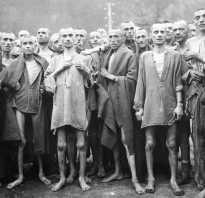 Кого содержали в концентрационных лагерях