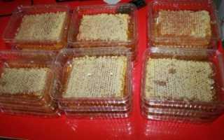 Где хранить мед в сотах