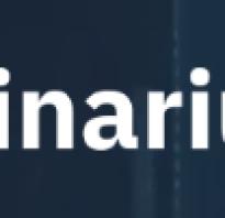 Что такое бинарные опционы