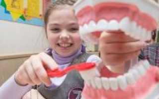 Сколько раз в день нужно чистить зубы