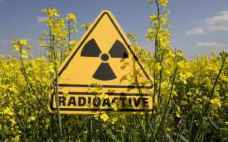 Что представляет собой ядерный реактор