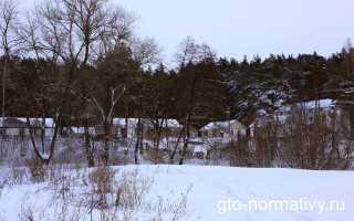 Сколько весит снежок