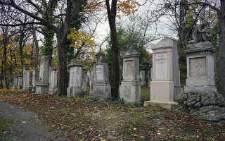 Почему Моцарта похоронили в общей могиле